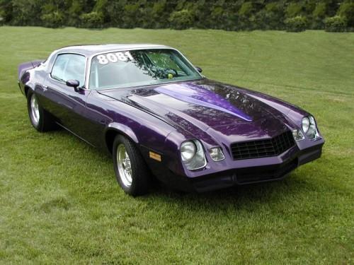 1981_Chevrolet_Camaro.jpg
