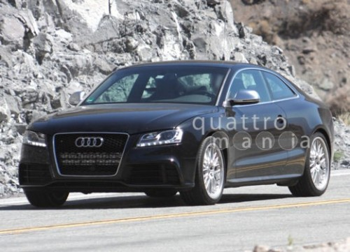 audi-rs5-spy_3955_big.jpg